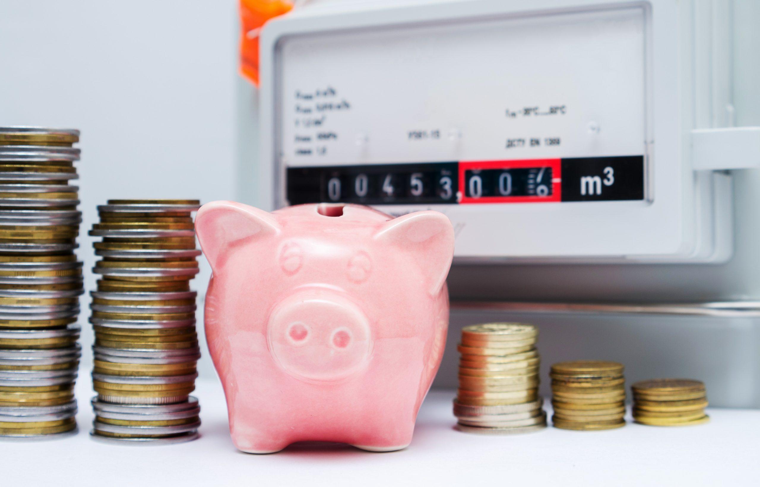 WECHSELSTROM dauerhaft Energiekosten optimieren
